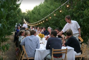 dry creek peach vineyard dinner