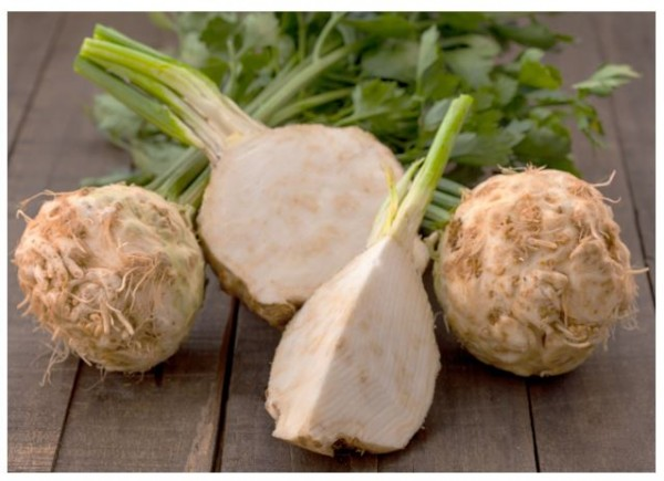 Celery Root (or celeri rave as the French call it) is a variety of the common branch celery that is cultivated for its root rather than its above ground stalks.